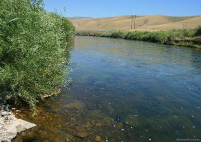 71907 dell clark beaverhead water 9477_MontanaPictures_Net