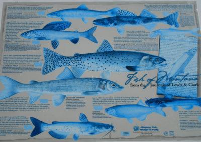 71907 dell clark overlook lc fish 9308_MontanaPictures_Net