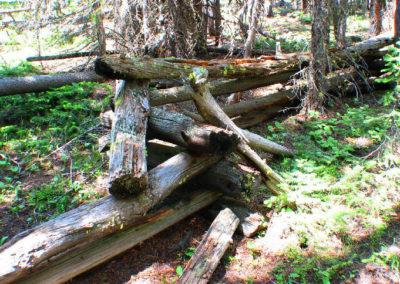 71204 melrose hidden cabin fence_MontanaPictures_Net